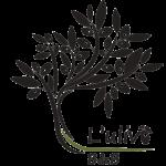 logo nero del b&b l'ulivo